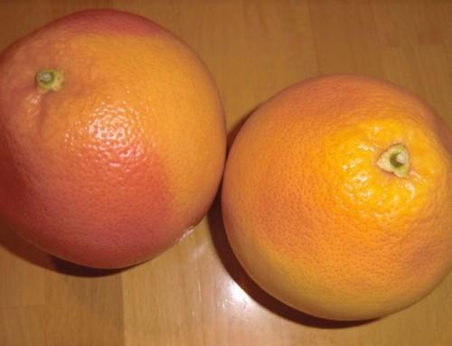 5 wertvolle Tipps und Ratschläge zur Veganen Shake- bzw. Saft-Diät